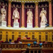 Proposition de loi visant à moderniser le système de protection de l'enfance  - Sénat