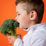 Des fruits et des légumes pour qu'ils grandissent bien :  comment surmonter leurs réticences ?