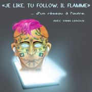 « Je like, tu follow, il flamme »  ... d'un réseau à l'autre