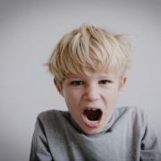 La colère de l'enfant : Comment la dompter ?