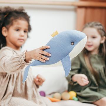accueil mixte assistante maternelle creche